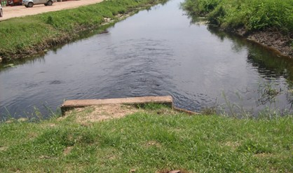 dWT foto / Beta Debidien - Een afvoerleiding in Coronie. Landbouwers willen een betere regulering van het zwampwater in het kokosdistrict.-.